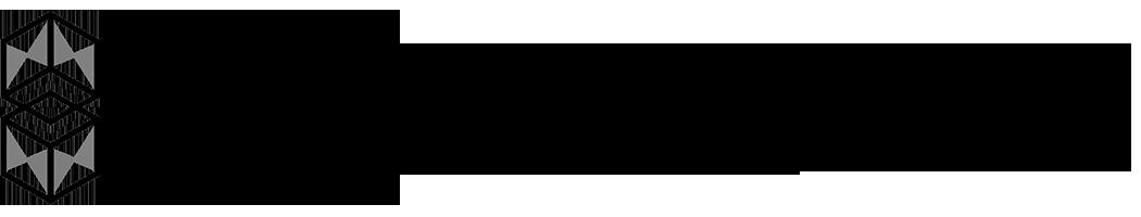 Blockchain X logo